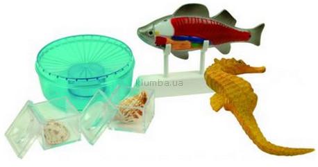 Детская игрушка Cog Изучение моря (Marine Science)