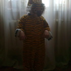 Прокат карнавального костюма тигра