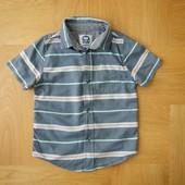 2-3 года TU отлична фирменная тениска хлопок. Длина - см, ширина - см, плечи - см. 85 грн