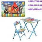 Детский столик со стульчиком складной Angry Birds DT 19-5