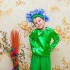 Карнавальный костюм василёк, васильок, нарцисс, подснежник мальчик прокат