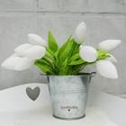Букет тюльпанов в ведерке
