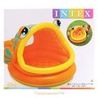 Надувной бассейн рыбка Intex 57109
