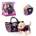 Модная Собачка Кики в сумочке