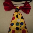 Продам  карнавальный костюм клоуна,шута,арлекина