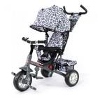 Велосипед трехколесный Zoo-Trike tilly-0005 колеса на пенорезине!