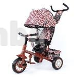 Велосипед трехколесный Zoo-Trike Tilly фото №1