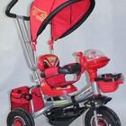 Распродажа!!! Трехколесный велосипед Panda тачки bc-16 s