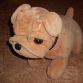 Б/У - собака большая