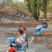 Детский трехколесный велосипед Smart Trike Dream торг