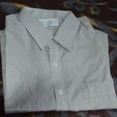 Рубашка в полоску, 39 Новая!