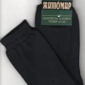 Носки мужские махровые х/б Житомир, 41-45