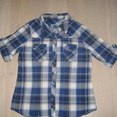 Блузка (рубашка) E-vie 42 р. UK 14