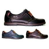 Кожаные мужские туфли цвета Модель: 120