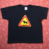 Хлопковая футболка на 5-6 лет, б/у. Хорошее состояние, без пятен. Длина 44 см, ширина 39 см.