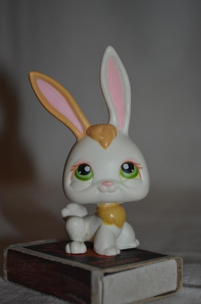 Петс шопы pet shop игрушки зоомагазин littlest pet shop lps с магнитиком фото №1