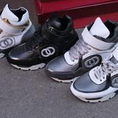 Зимние кроссовки на меху Chanel. Кожа.  36-41 р