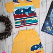 Летний костюм 68 размер отличное качество, шорты, футболка, 100% хлопок, 6 месяцев, костюмчик