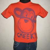 На 2-3 года Яркая футболка Debenhams мальчику
