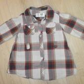 Продам за 35!Легенькая рубашечка Zara для девочки р,78 (9-12мес)