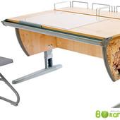 Комплект мебели, Дэми парта + стул+2 полки задних, клен Серый с рисунком фрегат (Д-20031068)