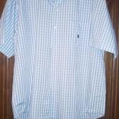 Рубашка большого размера Polo