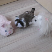 Интерактивные бегающие животные fur real hasbro zhu zhu puppies pets