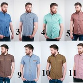 Распродажа Рубашка на коротком рукаве 24 цвета
