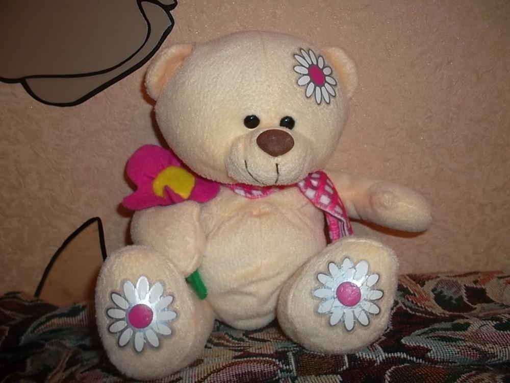 Добрый медвежонок фото №1