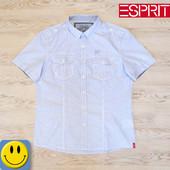 Рубашка в мелкую клетку EDC by Esprit xl - xxl, ворот 47 см. Состояние новой. мужская