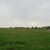 Срочно Земельный участок, с. Перегуды. 12 соток