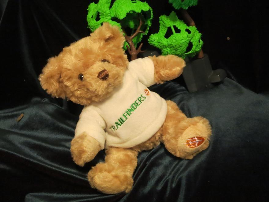 Мишка.мішка.ведмедик.медведь.мягкая игрушка.мягкие игрушки.мягка іграшка.trailfinders фото №1