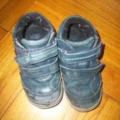 Ботинки кожа  - 15 см, 24 размер.