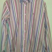 Чоловіча сорочка Tommy Hilfiger