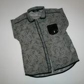 6-7 лет Нарядная блуза с принтом собак