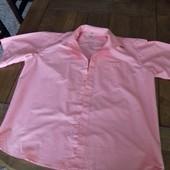 три рубашки 47 размер  Замеры коралловой: плечи 51 см, пог 68 см, пот 68 см, длина 79 см  замеры го