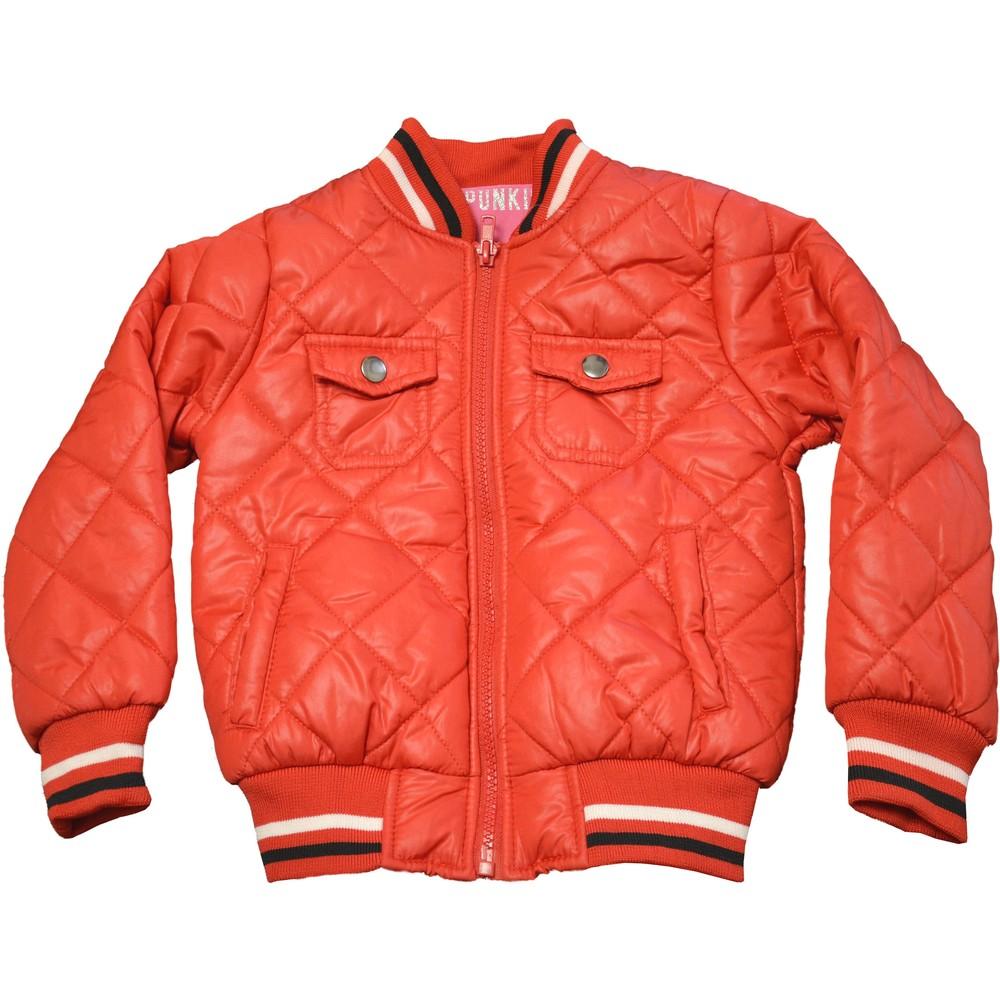 Демисезонная куртка. 2, 3, 5 лет фото №1