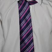 Фирменные галстуки! На праздник и каждый день! Один на выбор победителя!