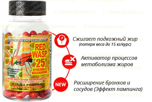 Капсулы для похудения красная оса от клома фарма фото №1