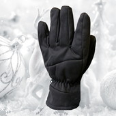 Лыжные мужские перчатки р. L/Xl Softshell George