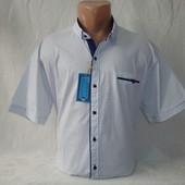 Мужская рубашка с коротким рукавом Varetti, Турция. Большие размеры. Разные цвета.