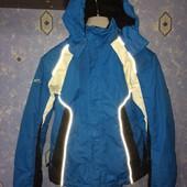 мужская лыжная куртка Alive