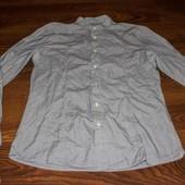 Рубашка мужская all saint S состояние отличное (нет одной пуговицы)