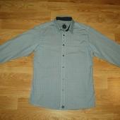 Springfield (M) хлопковая рубашка