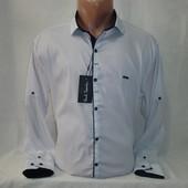 Мужская рубашка с длинным рукавом на кнопках Paul Semih. Разные цвета.