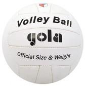 Волейбольный официальный мяч Gola