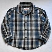 Рубашка early days на 18-23 мес., рост 86-92 см, хлопок