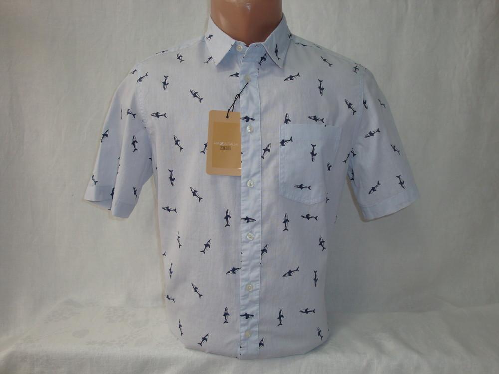 Мужская рубашка с коротким рукавом Piazza Italia. Разные цвета. фото №1