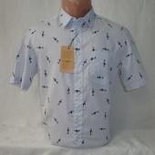 Мужская рубашка с коротким рукавом Piazza Italia. Разные цвета.