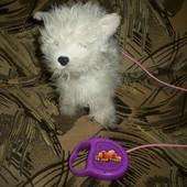 интерактивная собачка на поводке my little puppy